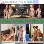 Bad Puppy Vk