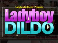 Ladyboywank.com ladyboy gallery