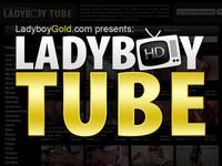 Ladyboywank.com tranny