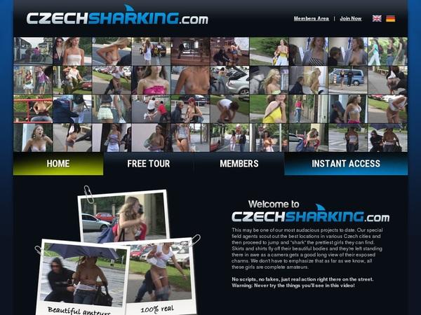 Czechsharking.com Registration Form