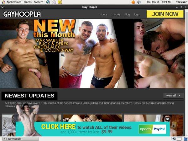 Gay Hoopla Best Videos